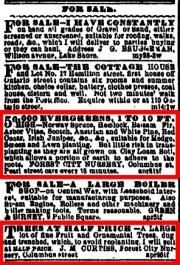 1874 newspaper ads for Forest City Nursery
